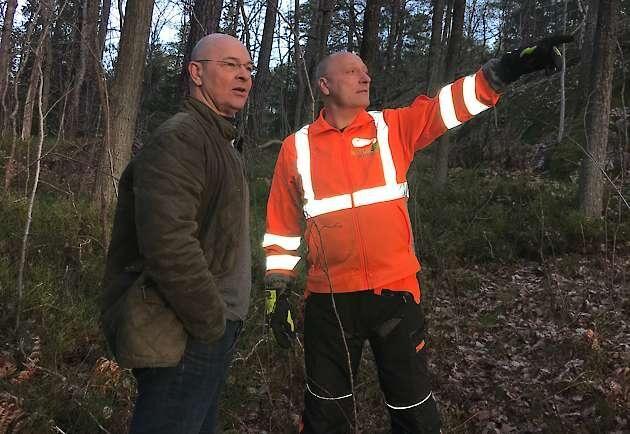Bland Naturskogs medarbetare finns ekologer, certifierade arborister, skogsmästare, jägmästare, biologer, motorsågspersonal och stängselbyggare.