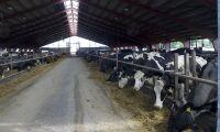 Akut foderbrist hotar fler bönder