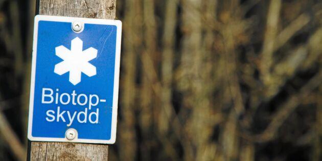 Lokal prisbild ska vägas in när skog skyddas