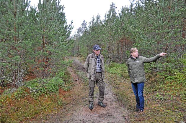 På Boo egendom är 55 procent av skogsmarken tallskog, och så ska det förbli. 650 jägare jagar på Boo egendom varje säsong, vilket bidrar med extra pengar till företaget, enligt Carl-Fredrik Hamilton.