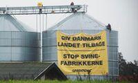 Aktivister får böta efter aktion mot dansk grisgård