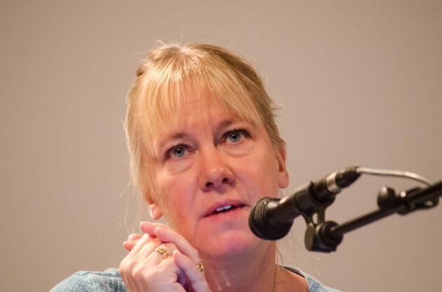 Vattenvårdsdirektör Sandra Brantebäck på Länsstyrelsen Västra Götaland vill nu ha ett bättre samtalsklimat med företrädarna för den småskaliga vattenkraften.
