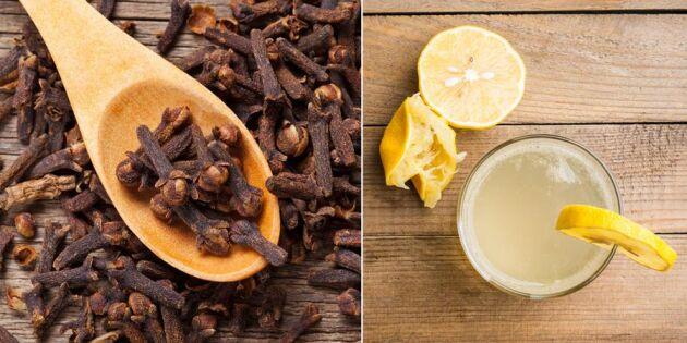 Magsjuka, förstoppning, PMS – 7 naturliga huskurer