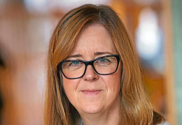 Elisabet Salander Björklund, Bergviks VD, vill inte kommentera hur det går med delningen utan hänvisar till ägarna.