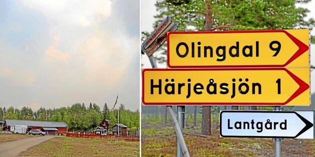 Kor evakueras från skogsbrand