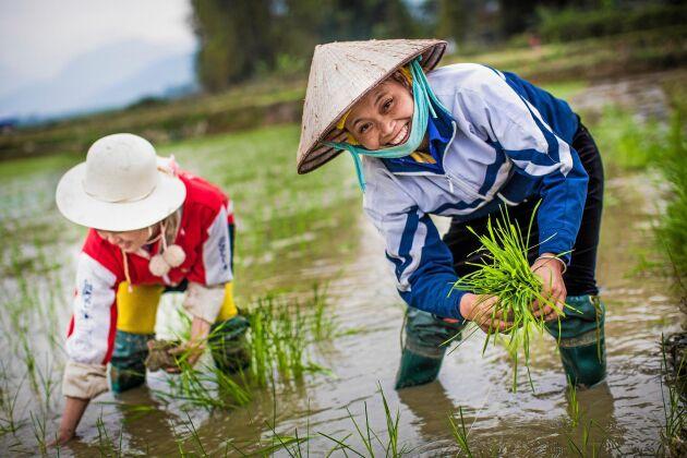 Hjälp kvinnor på Vietnams landsbygd att komma ut i arbetslivet med hjälp av We Effect.