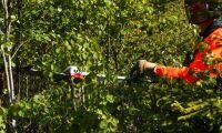 Naturvårdsverket vill se 2000 nya jobb
