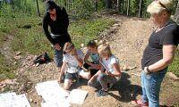 Tävling lär barn om skogen