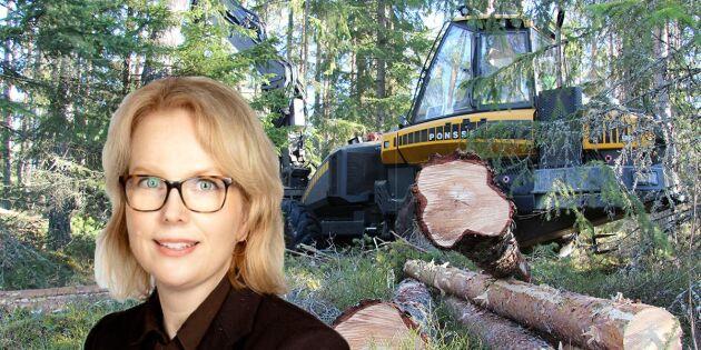 Aktiv inom skogsbranschen? Då får du inte missa Land Skogsbruks nyhetsbrev!