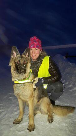 Reflexer kan man inte ha för många av. Se till att både du och hunden syns ordentligt i mörkret.