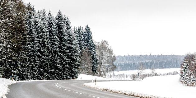 Så kör du säkert i halkan – rallyförarens 5 bästa råd!