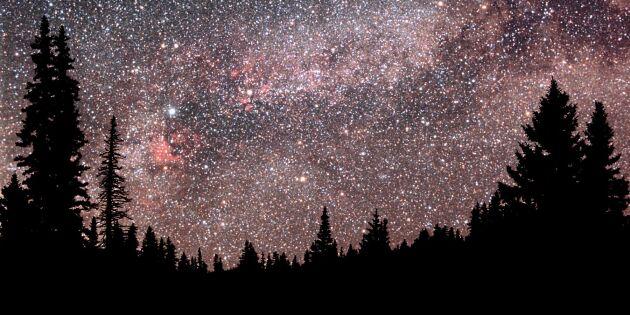 Nu kan du hjälpa forskarna – räkna himmelens stjärnor
