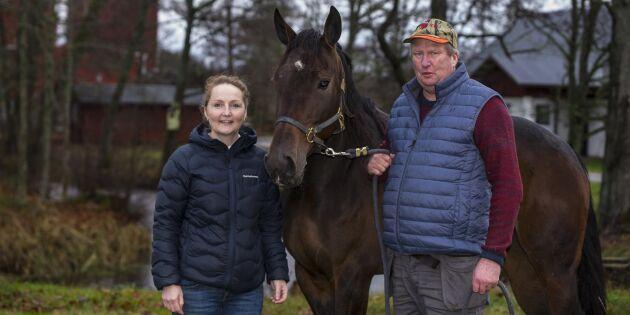Effektiv stallmiljö ger mer tid till hästarna