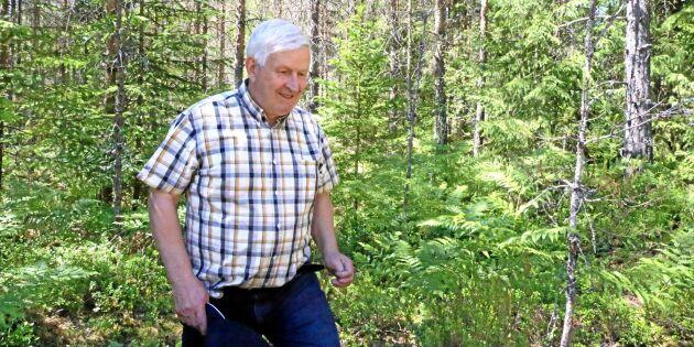 Självföryngring ska ge honom världens finaste kvalitetsskog