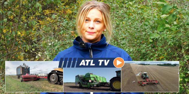 ATL TV: Vi testar nygammal bandtraktor