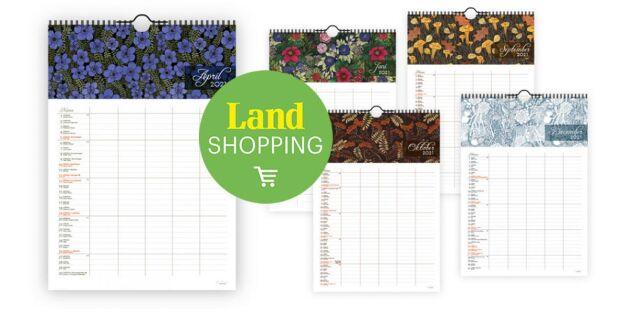 Starta året med ordning & reda! Väggalmanackor med handritade illustrationer