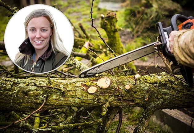 Marit Bohlin, blivande skogsägare, LRF Ungdomen.
