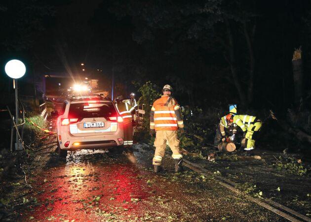 Röjningsarbete av ett träd som fallit över en personbil på Gamlestadsvägen. Foto: Adam Ihse/TT