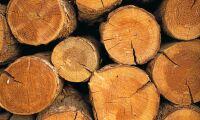 Satsning på nya material från trä