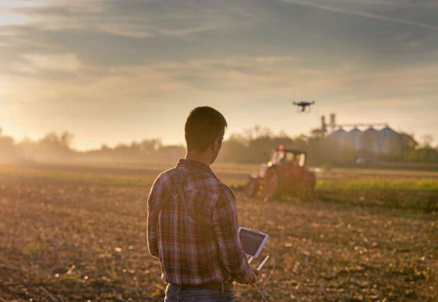 Mer innovation och höjd utbildningsnivå i bland annat bondeledet ska bryta trenden med jordbrukets sjunkande konkurrenskraft, enligt Jordbruksverket.