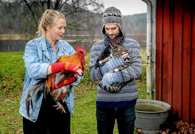 Paret följde sin dröm och flyttade till en gård på landet. Tuppar, höns och katter bidrar med ägg och trivsel, men grönsaksodling och festarrangemang är de stora bitarna i företaget. Tuppen Rasks är så tam att han gärna blir buren, liksom katten Kokos.