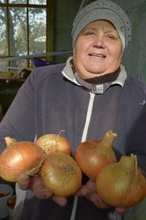 Bakgårdsbonden Irina Petrovna har 10 hektar av kommunens mark som hon får bruka gratis.