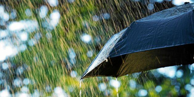 Järnnätter, markfrost och dagsmeja –kan du väderspråket?