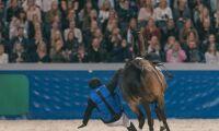 Huvudet skadedrabbat vid hästolyckor