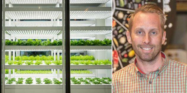 Vilket nytänk: Matbutiken satsar på eget växthus!