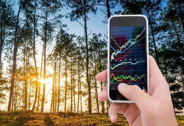 Data om skogen ska bli mer tillgänglig med Nationellt skogsdatalabb.
