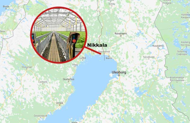 ... som bara ligger någon mil från gränsen till Finland.