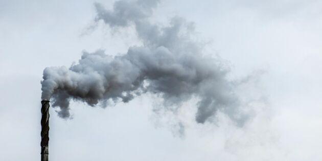 Förbränning av slammet ökar dioxinutsläppen