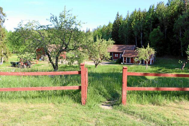 Det lugna livet på den sörmländska landsbygden passar Lena Engelmark Embertsén och Olas Engemark bra.