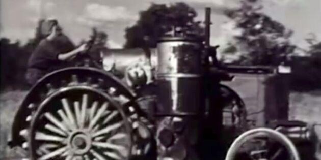 Kvinnor och bönder var krigets hjältar