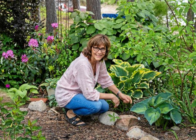 Paula byggde ett trädgårdsparadis i stenigt läge