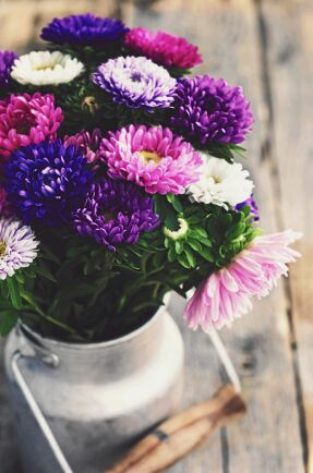 Vackra blommor är bra för både dig och andra!