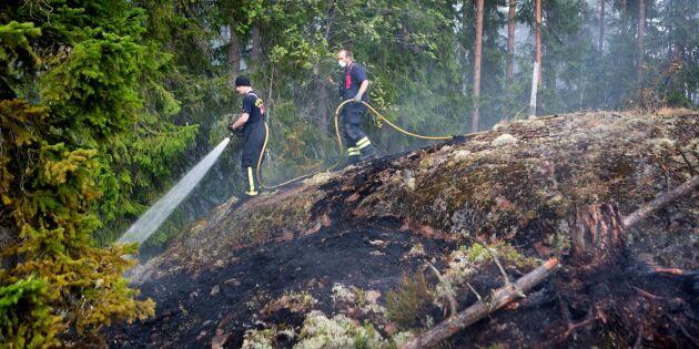 Lärdomar efter branden 2014