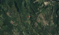 Nya ägare till skogsfastighet i Norrbotten