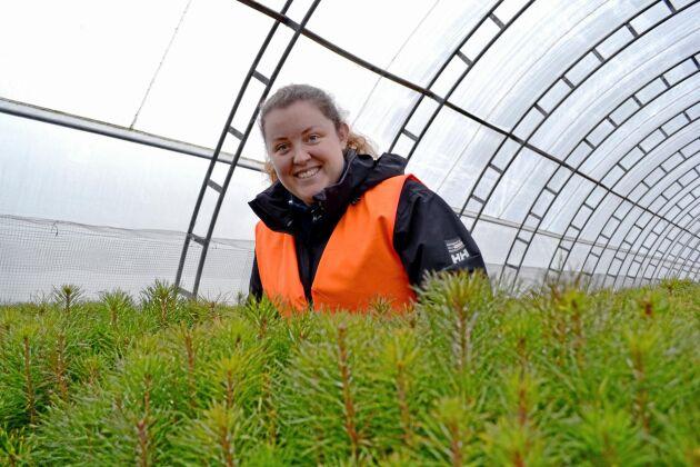 Rebecca Larsson är industridoktorand på SLU och forskar på alternativ till kemiska fungicider hos Svenska Skogsplantor. Här på Lugnets plantskola i Bålsta.