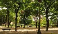 Inget gift i franska parker