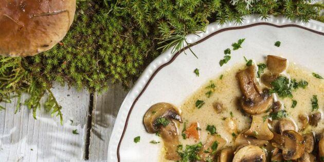 Värm dig med en soppa – 5 fantastiska recept