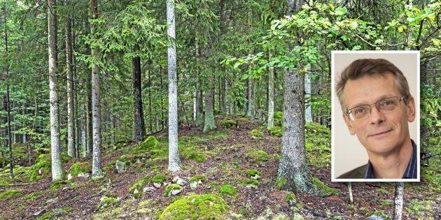 Värna den Nordiska skogsbruksmodellen