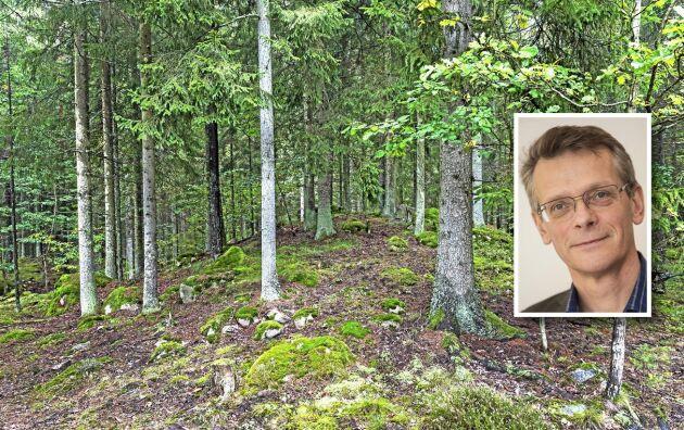 Upp till kamp för den Nordiska skogsbruksmodellen, manar ATL:s krönikör Johan Freij.