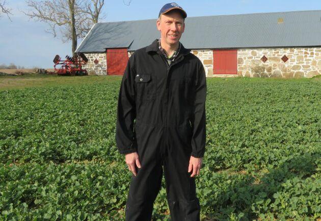 Enligt Thomas Persson avkastar höstvete 1–2 ton mer per hektar efter raps än efter spannmål. Därför fortsätter han med raps.