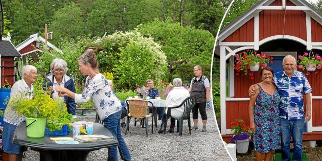Öppen Trädgård i kubik i Västervik