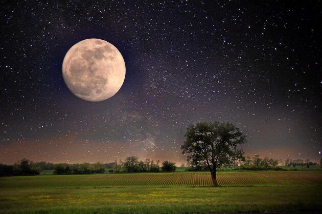 Superfullmånen ser både större och ljusare ut än en vanlig fullmåne. Då blir det superfullmåne i Sverige 2020!