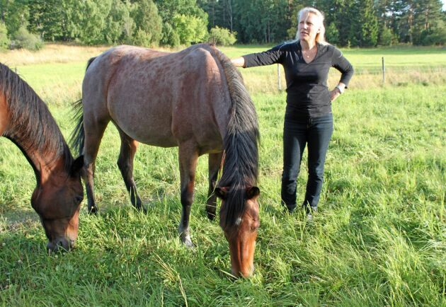 """""""Bete kan ge ett bra tillskott i foderstaten en bra bit in på vintern, men då får det vara välbetat på sommaren"""", säger Anna Jansson, professor på SLU, här tillsammans med hästarna Great Jewel och Lowkeyed."""
