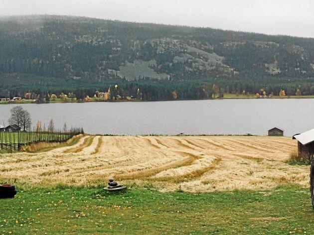 Mellangården i Klövsjö - innan snön föll.