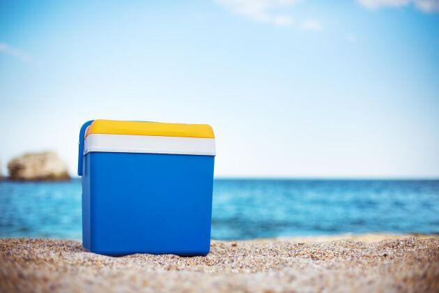 Lyxa till det med en kylbox för bilen i sommar. FOTO: ISTOCK