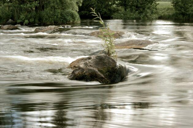 SMHI har utfärdat en klass 2-varning för höga flöden i Mörrumsån i Kronobergs län.
